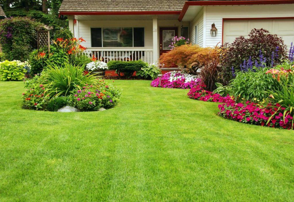tu jardin